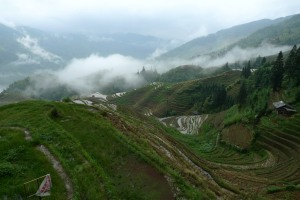 agricultural landscape photo by Daphne Kao