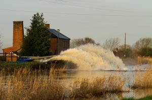Somerset pumpsLR-Flikr