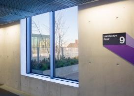 Uni of Greenwich Landscape Roof-161