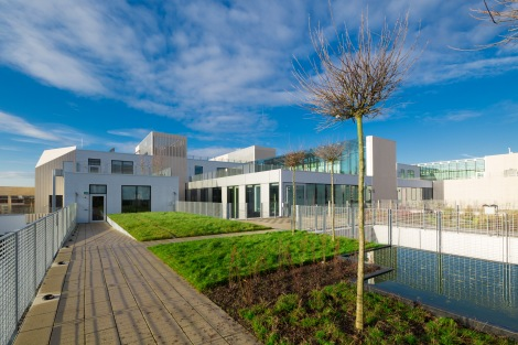 Uni of Greenwich Landscape Roof-31